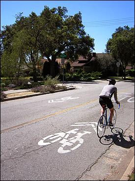 Sharrows on Mountain Avenue in Pasadena